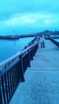 水橋フィッシュアリーナ0523