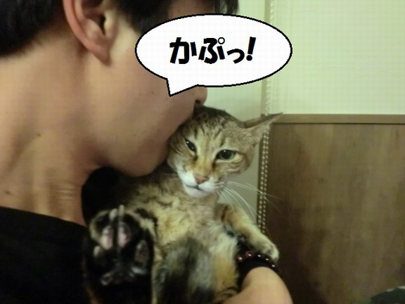 CIMG4611_サイズ変更