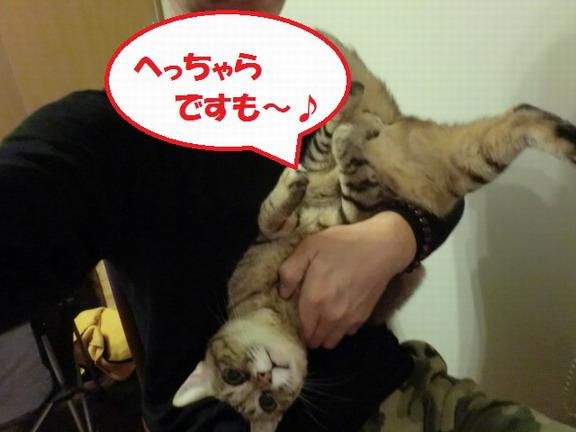 CIMG4613_サイズ変更