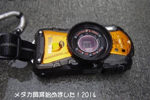 P1080222.jpg