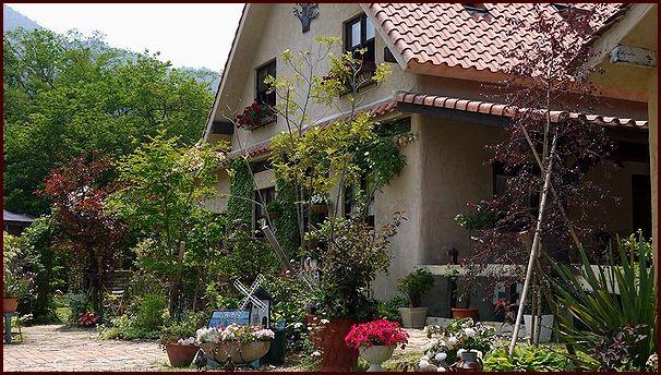 庭から望む家