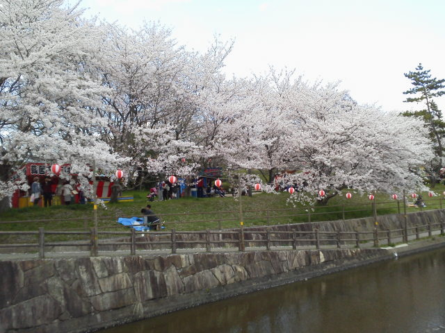 406sakazu4.jpg