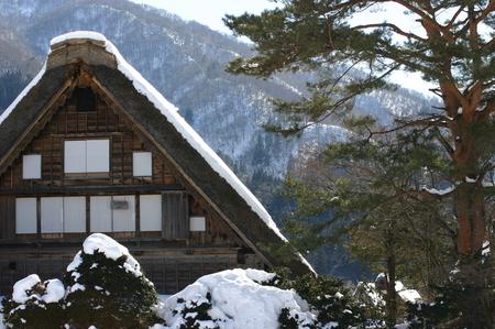 スキーやスノボーはちょと。。でも雪を楽しみたい!! 雪景色 世界遺産 白川郷合掌集落を見てみたい!! そんな方にはピッタリの冬旅行です ⑧