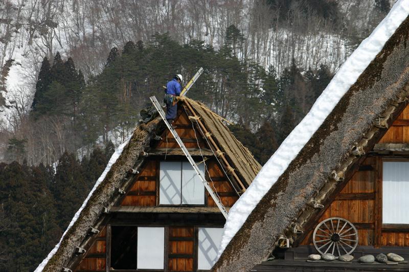 白川郷合掌集落 ~かん町 附近~ 茅葺き屋根の葺き替え作業 ⑧