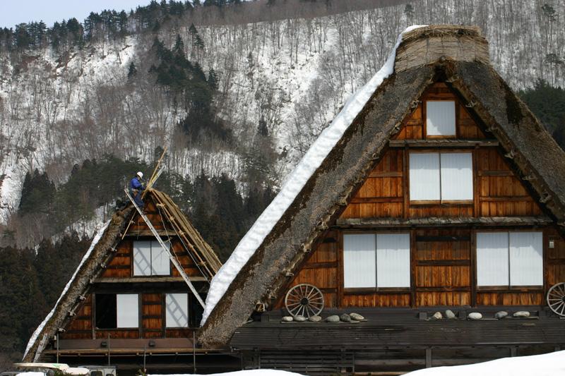 白川郷合掌集落 ~かん町 附近~ 茅葺き屋根の葺き替え作業 ⑨
