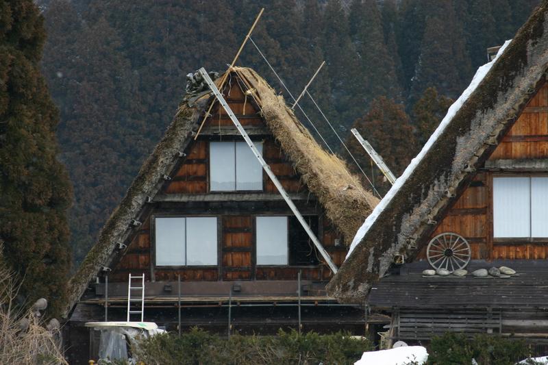 白川郷に来た時、まずは かん町の「三連合掌」に立ち寄ることにしています~ただ今、茅葺き屋根の葺き替え作業中!②