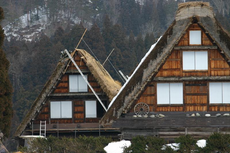 白川郷に来た時、まずは かん町の「三連合掌」に立ち寄ることにしています~ただ今、茅葺き屋根の葺き替え作業中!③