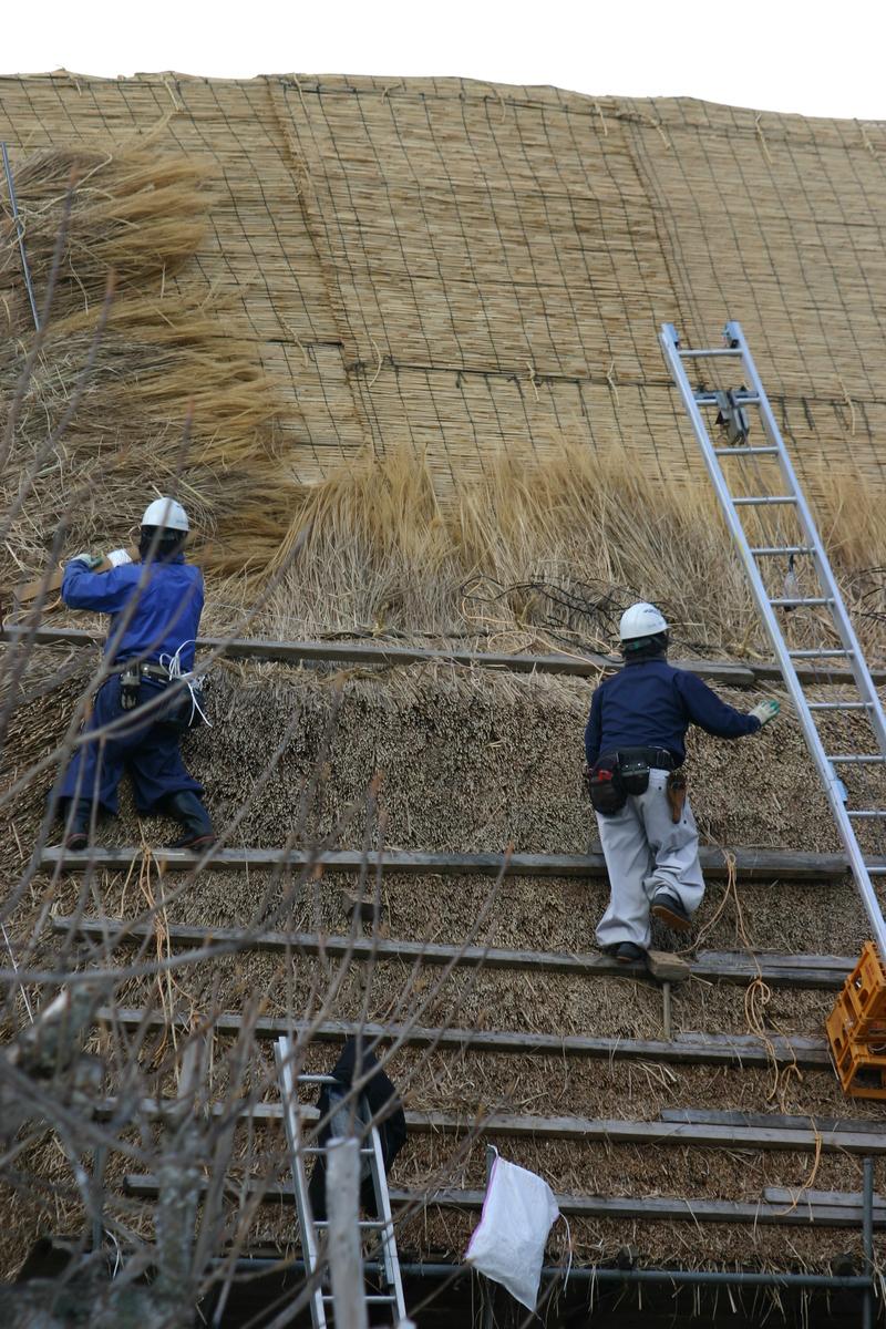 白川郷に来た時、まずは かん町の「三連合掌」に立ち寄ることにしています~ただ今、茅葺き屋根の葺き替え作業中!⑦