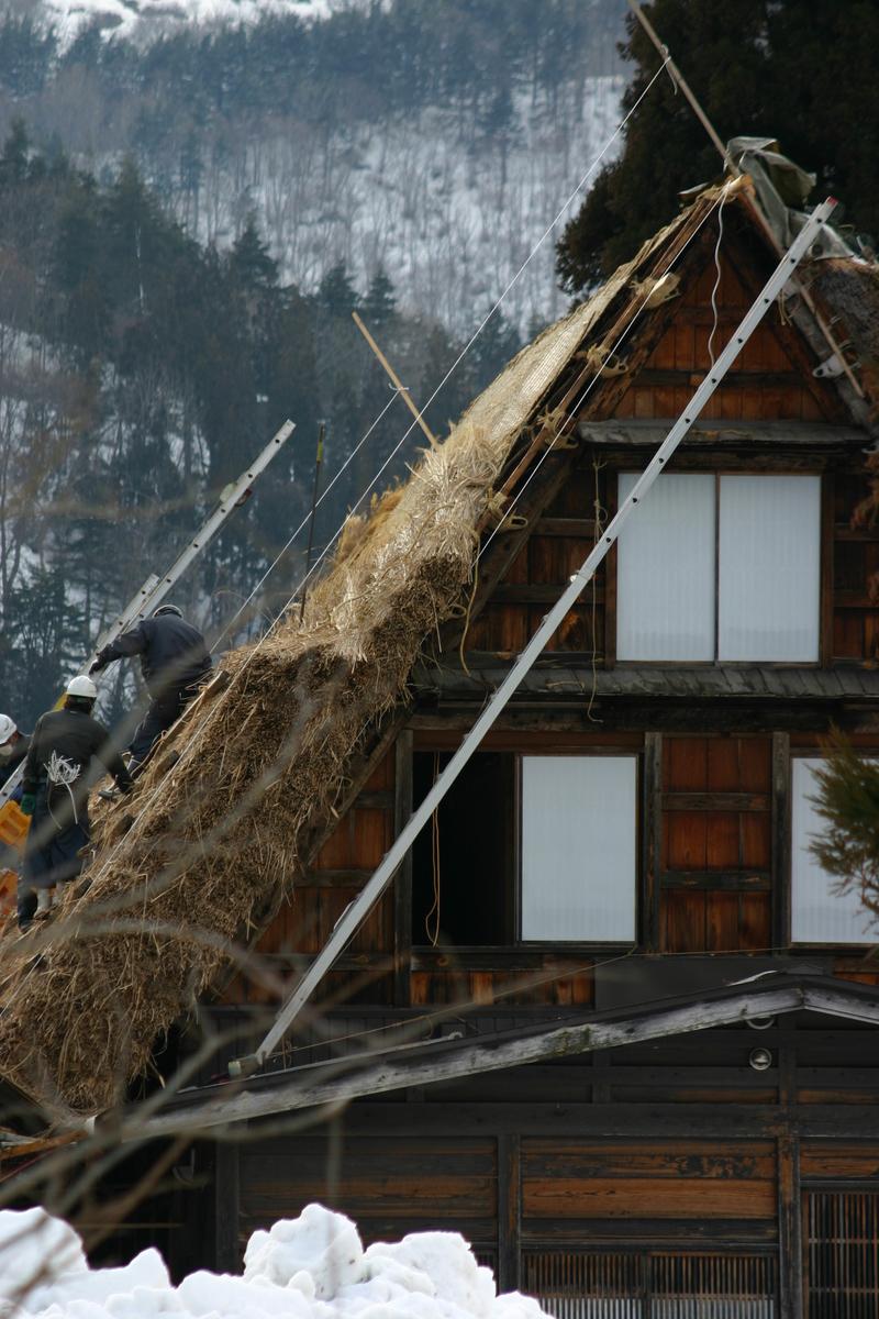 白川郷に来た時、まずは かん町の「三連合掌」に立ち寄ることにしています~ただ今、茅葺き屋根の葺き替え作業中!⑩