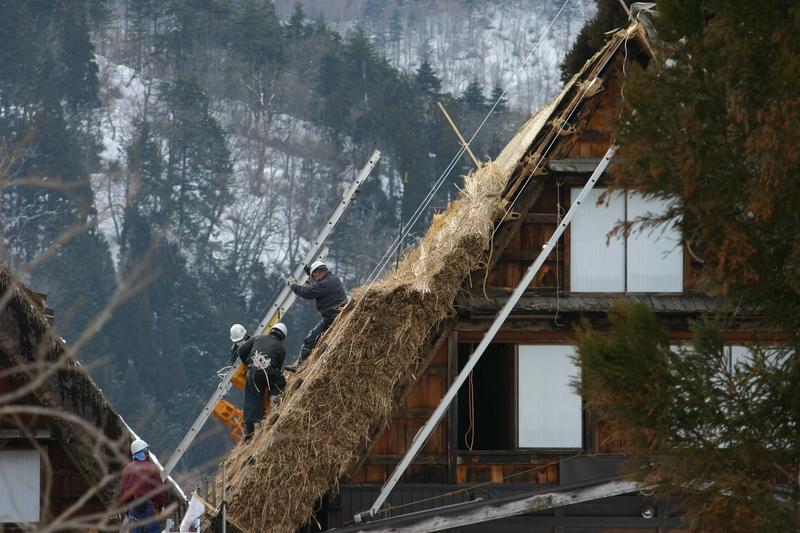 白川郷に来た時、まずは かん町の「三連合掌」に立ち寄ることにしています~ただ今、茅葺き屋根の葺き替え作業中⑪