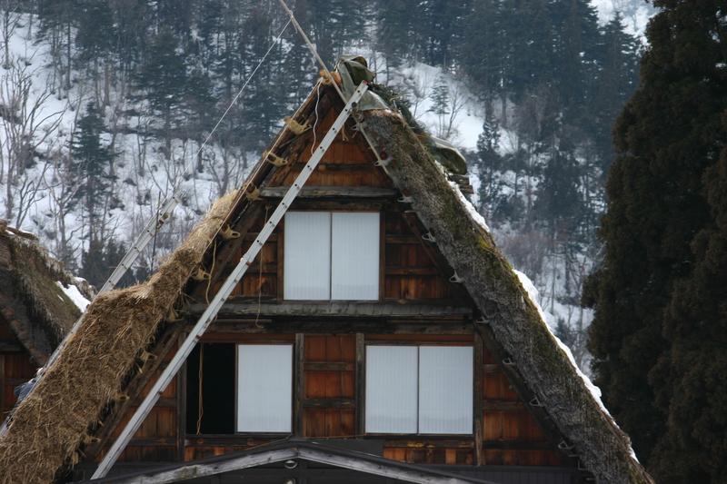 白川郷に来た時、まずは かん町の「三連合掌」に立ち寄ることにしています~ただ今、茅葺き屋根の葺き替え作業中⑫