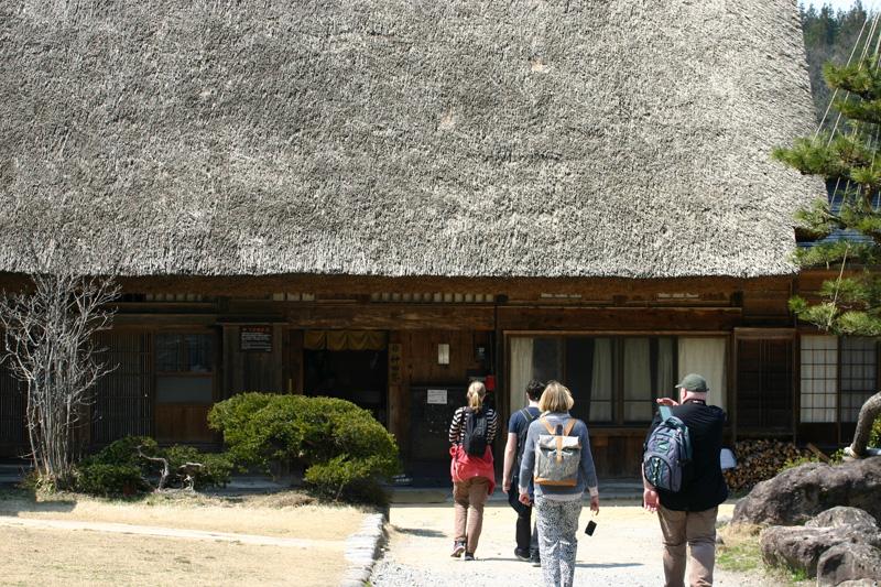 世界遺産 白川郷合掌集落~天守閣展望台~の桜のツボミは、 今、こんなです(n'∀')η ⑧