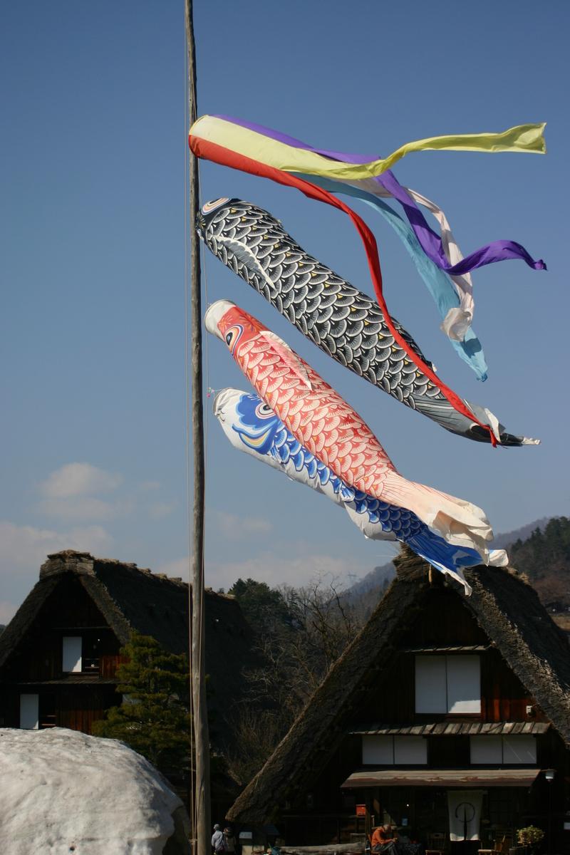 白川郷いよいよ桜の季節が到来!日本の春を満喫するならやっぱり桜&合掌造り風景 ⑤