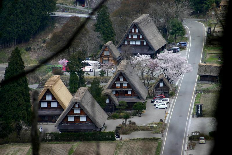 世界遺産 白川郷合掌集落は春爛漫~桜の季節がやってきました♪ ②
