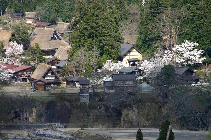 世界遺産 白川郷合掌集落は春爛漫~桜の季節がやってきました♪ ③