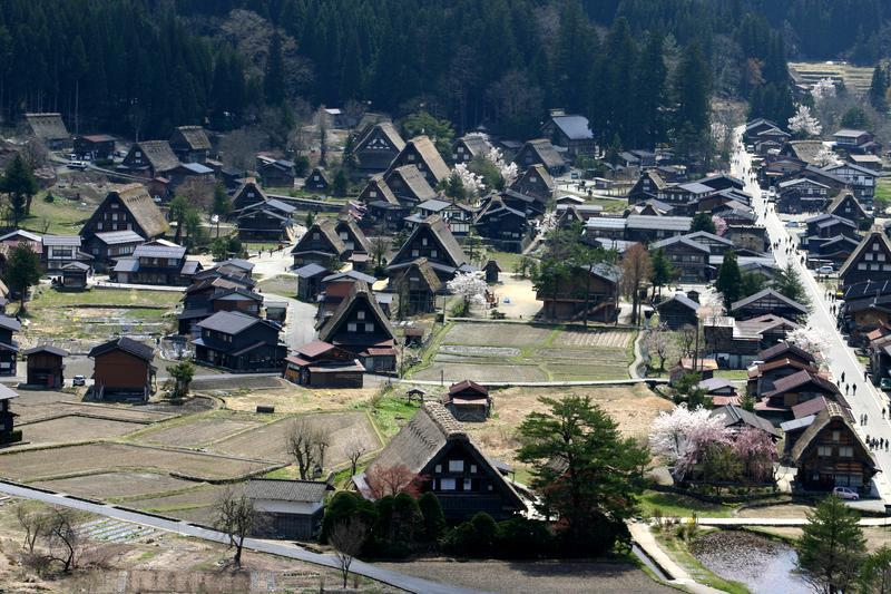 世界遺産 白川郷合掌集落は春爛漫~桜の季節がやってきました♪ ⑦