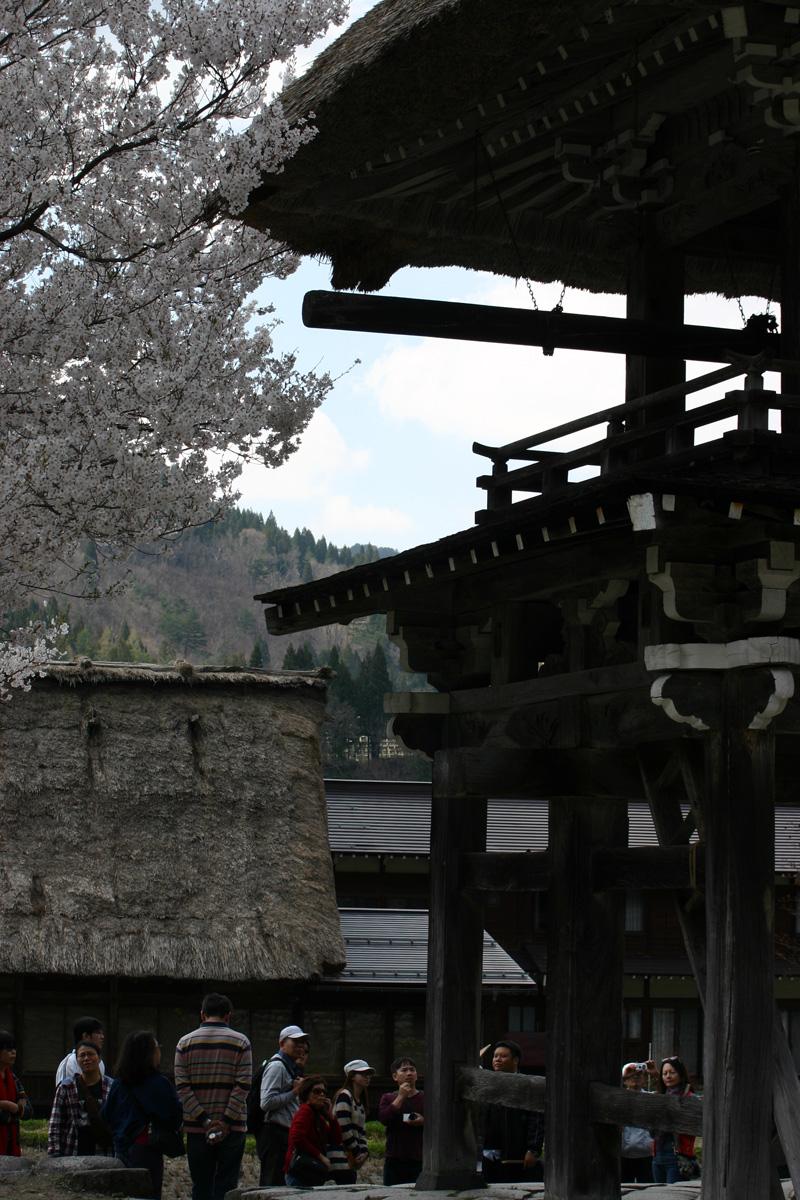 ゴールデンウィーク後半スタート桜の花が咲く世界遺産 白川郷!今年は飛び石連休となり、ちょっと旅行にはなあ・・・とお考えの皆様に♪ ⑭