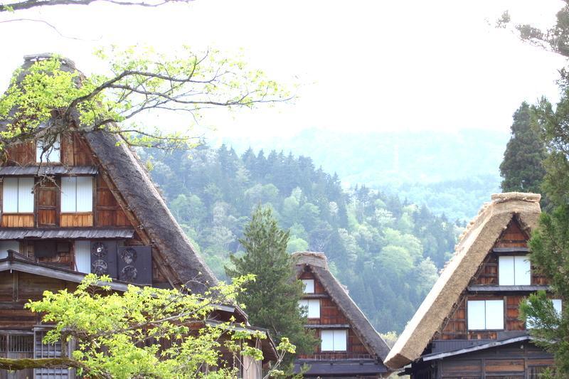 春から初夏の季節替わり~新緑が眩しい世界遺産 白川郷を満喫! ⑧