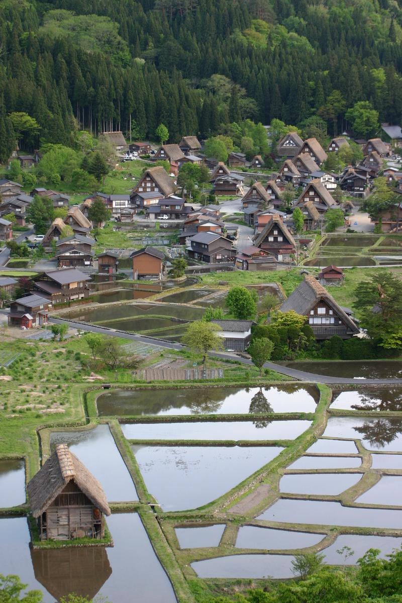 田植え前のこの時期だけ見られる水田に映える幻想的な合掌家屋の光景 ②
