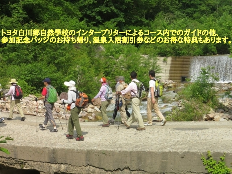 トヨタ白川郷自然學校のインタープリターによるコース内でのガイドの他、参加記念バッジのお持ち帰り、温泉入浴割引券などのお得な特典もあります。