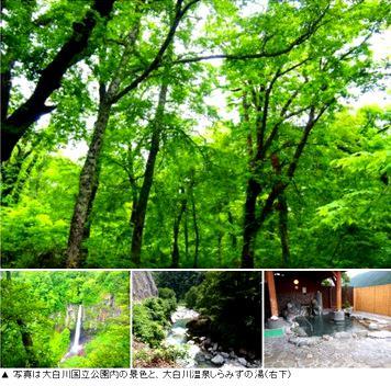写真は大白川国立公園内の景色と、大白川温泉しらみずの湯(右下)