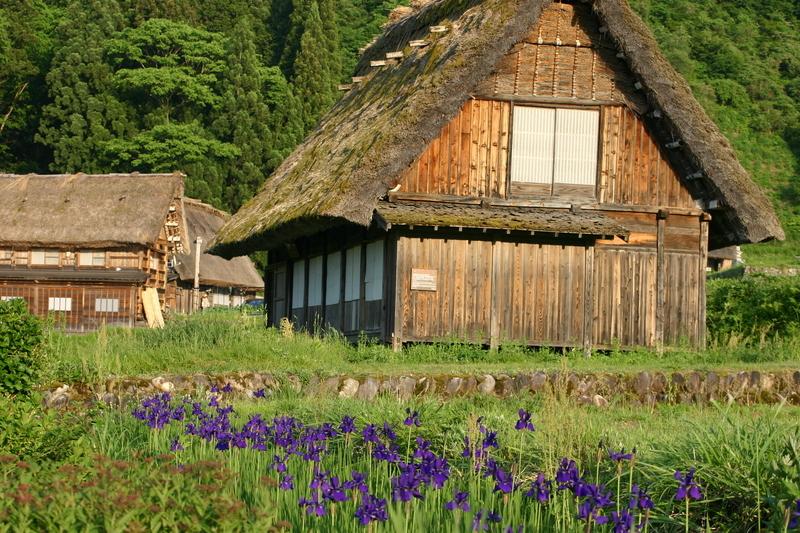 新緑から初夏へと季節は移り本格的な夏の訪れを静かに待つ季節~世界遺産 白川郷~ ②