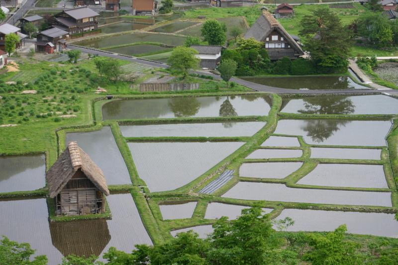 新緑から初夏へと季節は移り本格的な夏の訪れを静かに待つ季節~世界遺産 白川郷~ ④