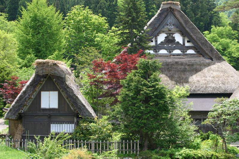 新緑から初夏へと季節は移り本格的な夏の訪れを静かに待つ季節~世界遺産 白川郷~ ⑧