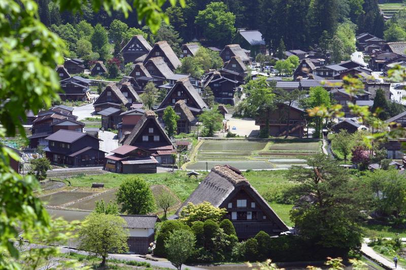 初夏は、ここ世界遺産で♪♪ 都会の雑踏を忘れ、自然豊かな「白川郷」に来ませんか!? ①