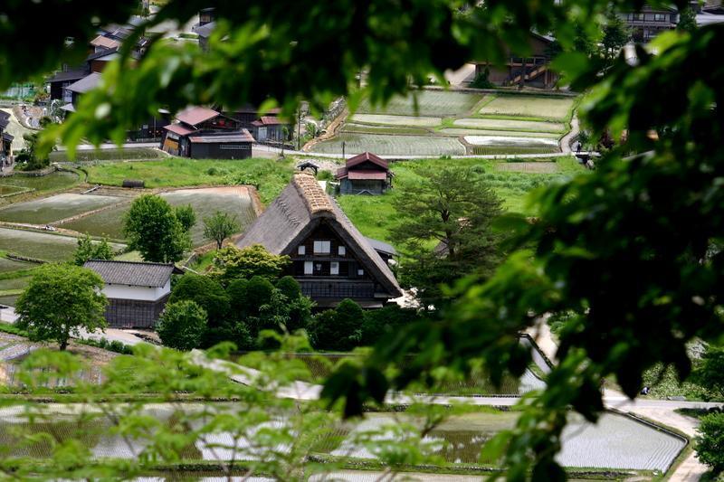 梅雨の季節こそ世界遺産 白川郷へ… 雨に洗われて輝く緑のグラデーション、合掌集落を華やかに彩る花々、 そして行楽シーズンでは味わうことができない静寂… ③