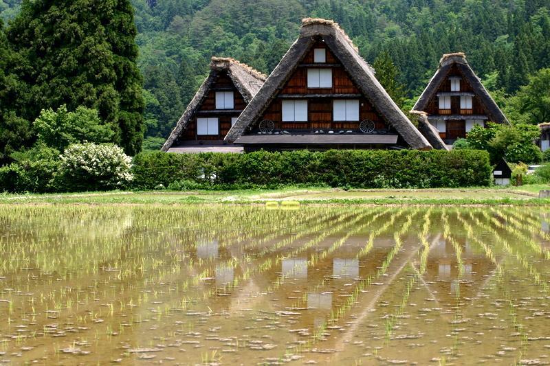梅雨の季節こそ世界遺産 白川郷へ… 雨に洗われて輝く緑のグラデーション、合掌集落を華やかに彩る花々、 そして行楽シーズンでは味わうことができない静寂… ⑦