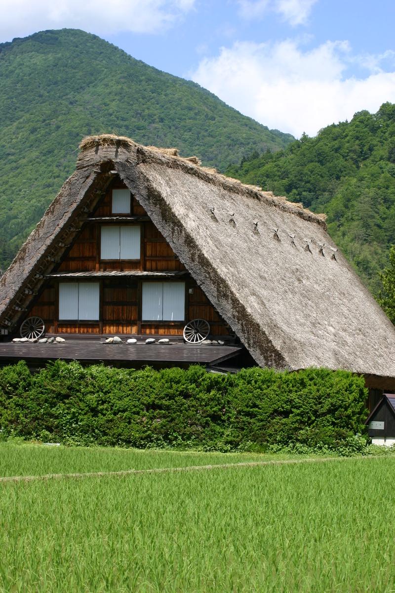 田園のなかに点在する合掌造りの民家 昔話のような日本の原風景がここに ~世界遺産 白川郷~ ②