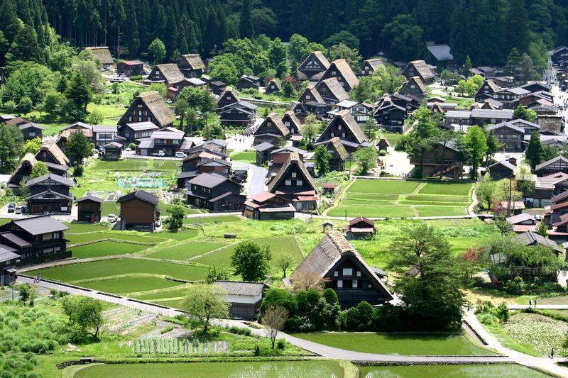 田園のなかに点在する合掌造りの民家 昔話のような日本の原風景がここに ~世界遺産 白川郷~ ③