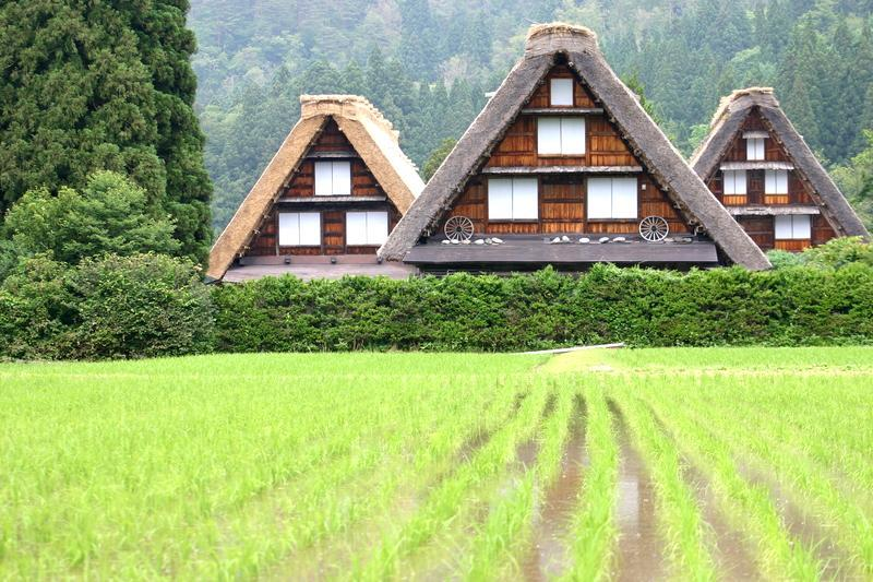 「合掌造り」と呼ばれる茅葺き屋根の家屋が立ち並び、郷愁を誘う風景が広がる~世界遺産 白川郷~  ①