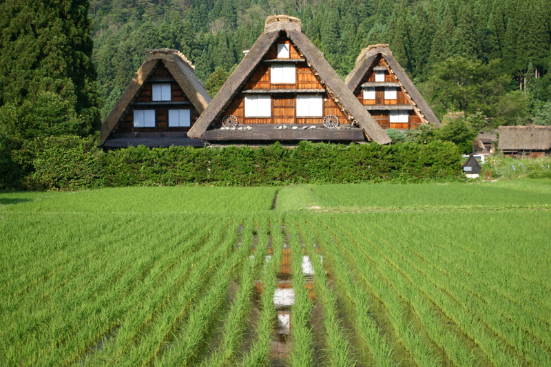 世界遺産 白川郷の旅 ちょっぴり憂鬱な梅雨も、山の木々を美しい緑に変え~青い空と白い雲が広がる眩しい夏へと誘う~一年の折り返し点のこの季節 ③
