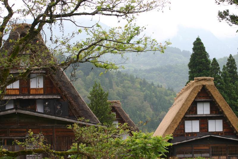 世界遺産 白川郷の旅 ちょっぴり憂鬱な梅雨も、山の木々を美しい緑に変え~青い空と白い雲が広がる眩しい夏へと誘う~一年の折り返し点のこの季節 ⑥