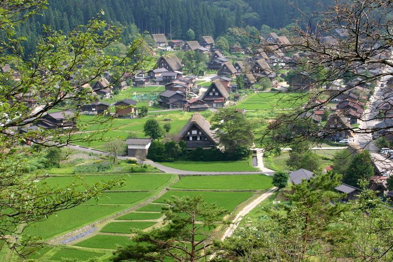 白川郷(日本の原風景が広がる世界遺産の合掌造りを散策) ①