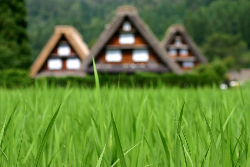 夏休み・・・世界遺産 白川郷の自然を満喫+温泉の楽しみをプラス ②