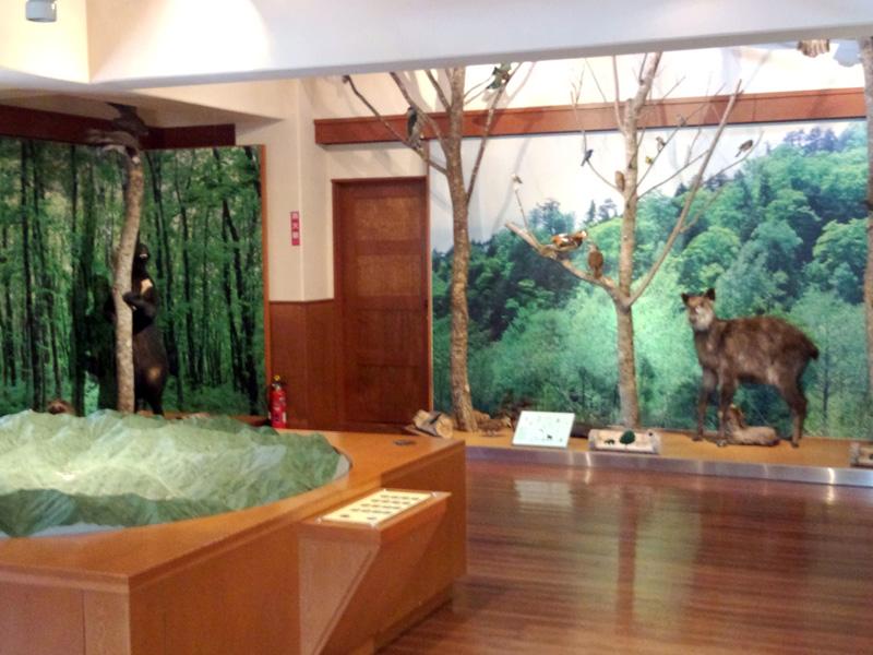 2014-07-31営業 桂湖ビジターセンター ⑤