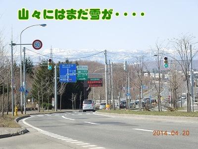 2014042001.jpg