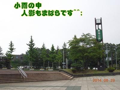 2014062907.jpg