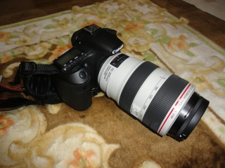 DSC07661-1.jpg