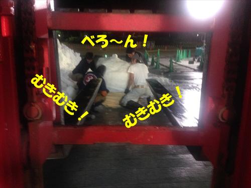 雪匠inTOKYO_2014『6月27日』 (252)_R