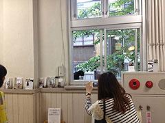 20145shisetsuneko3.jpg