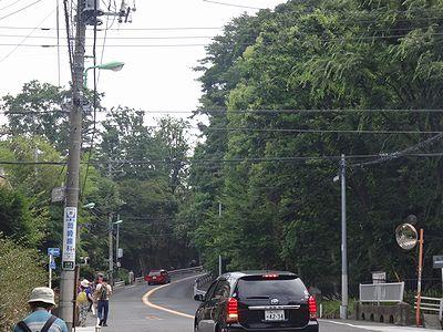 futako201406b.jpg