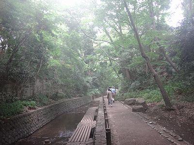 futako201406k.jpg