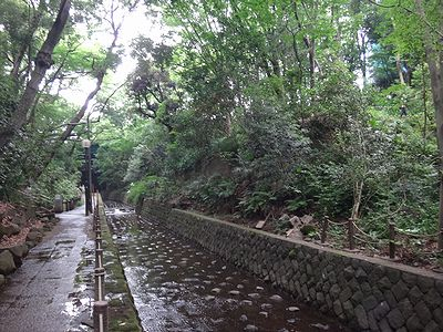 futako201406n.jpg