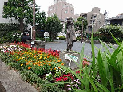 futako201406t.jpg