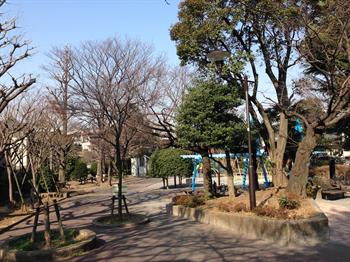 2014・2.25 みどりと花3_R