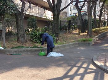 2014・2.25 みどりと花1_R